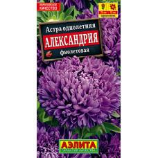 Астра Александрия фиолетовая   семена
