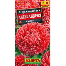 Астра Александрия красная   семена