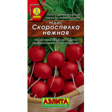 Редис Скороспелка нежная --- | Семена