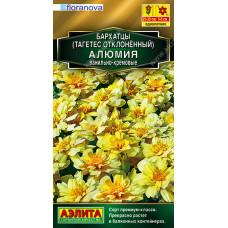 Бархатцы Алюмия ванильно-кремовые --- Одн Сел. Floranova Золотая серия   Семена