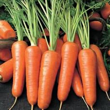 Морковь Рафинад Арт. 5393