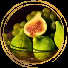 Инжир желтовато-зеленый ремонтантный Долматский