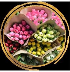 Срезка тюльпанов к 8 марта!