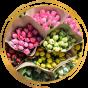 Тюльпаны на срезку