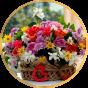 Цветы (124)