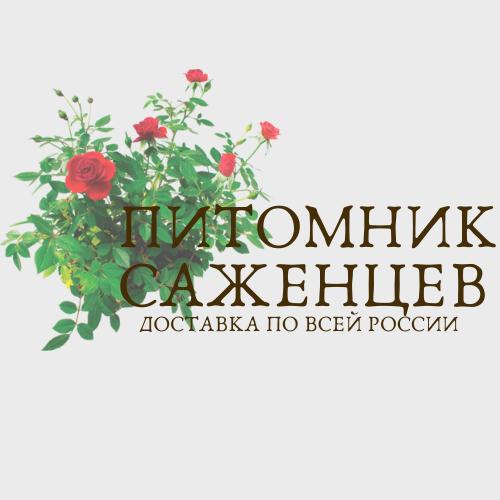 Интернет-магазин саженцев. Доставка по всей РФ